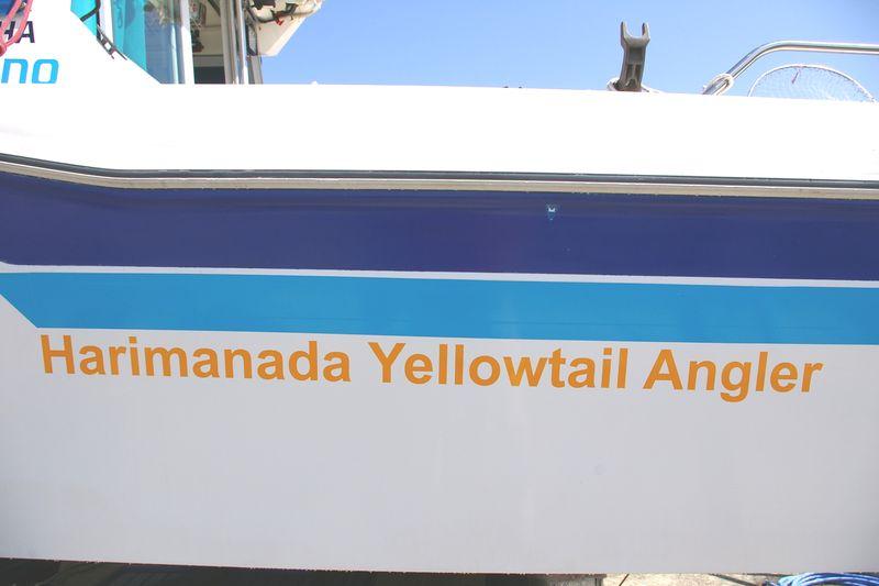 Harimanada Yellowtail Angler