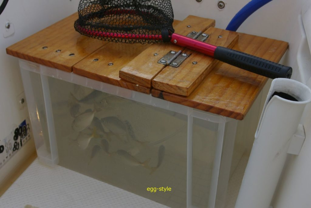 海水ポンプで循環させるイケス