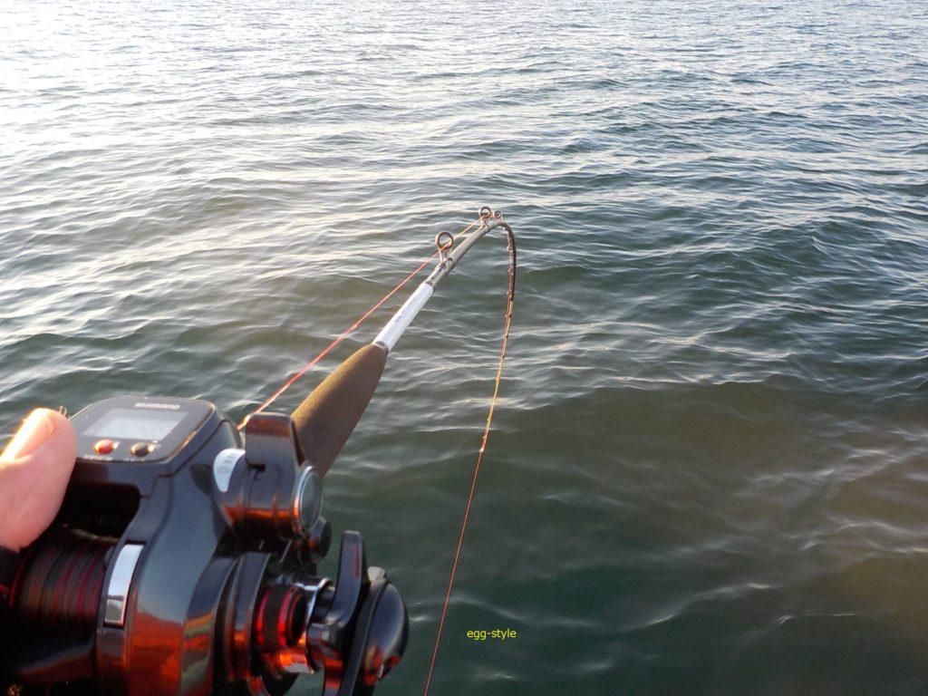 タチウオ釣りのサオ
