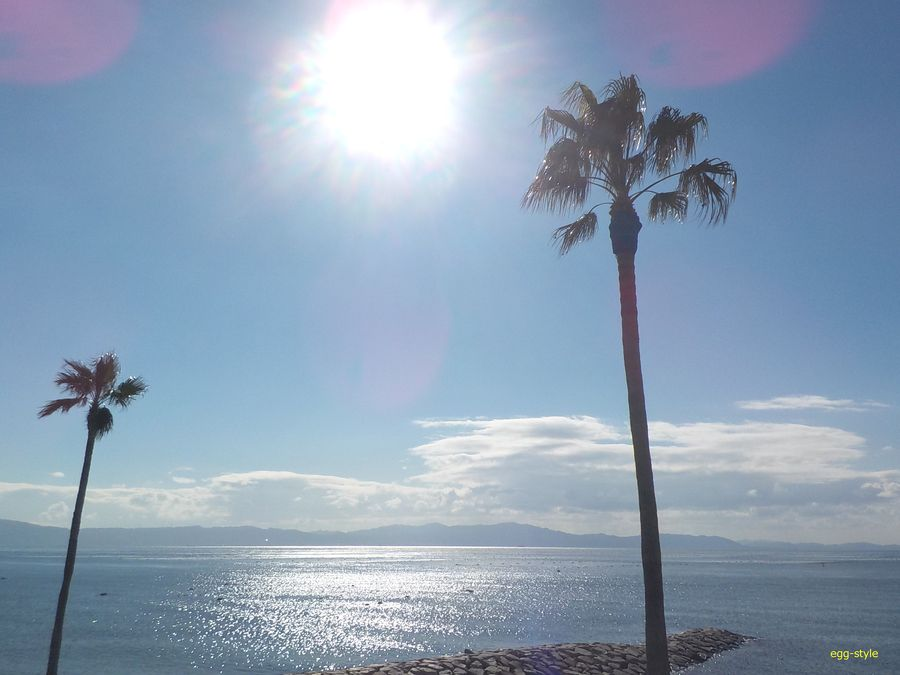 明石海峡の潮流の流れを大きく受ける江井島沖