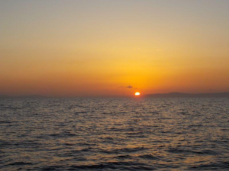 播磨灘は、豊かな海を目指す