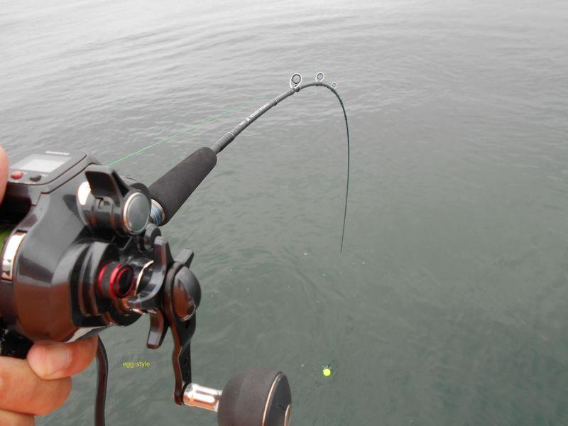 チョクリ釣りでハマチ3匹の引きに耐える