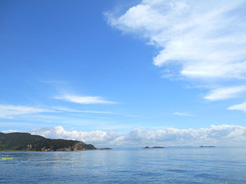 夏の海ですよ。梅雨は明けないのかな