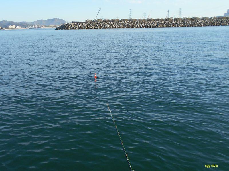こんな場所で、ウキ釣りでハマチをアジで釣る