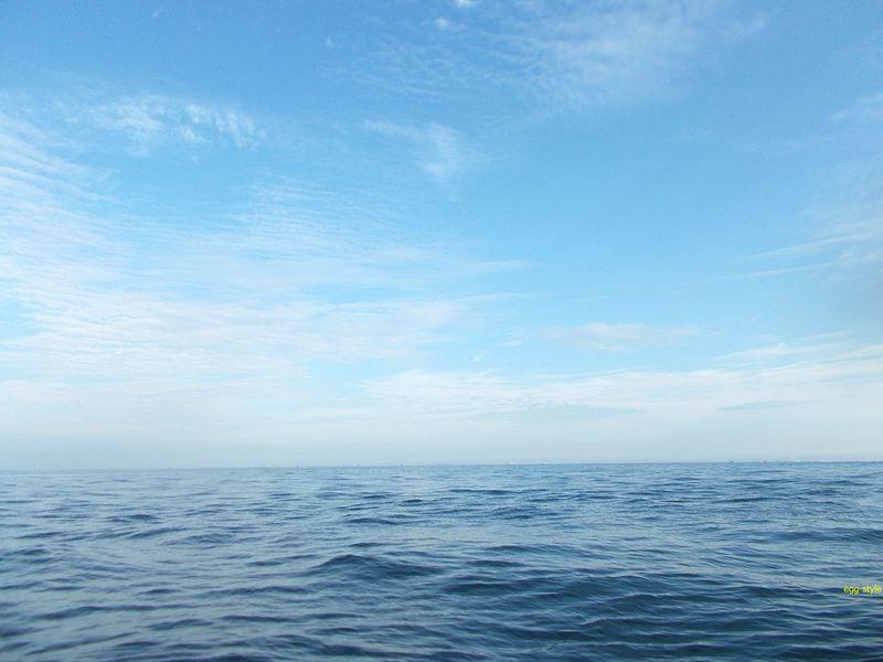 良く晴れた朝、この海面にボコンと顔を出すハマチを狙います