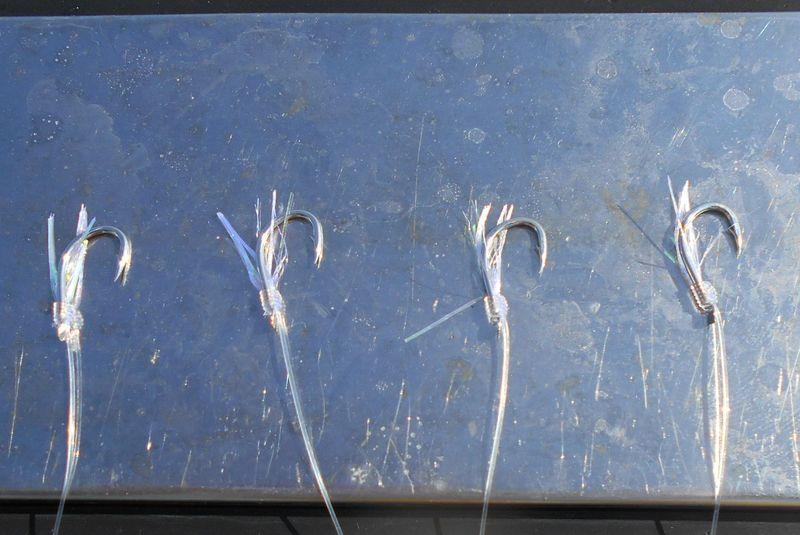 このハリにイワシが喰い、それを青物が食べる。簡単明瞭な釣りなんですが…