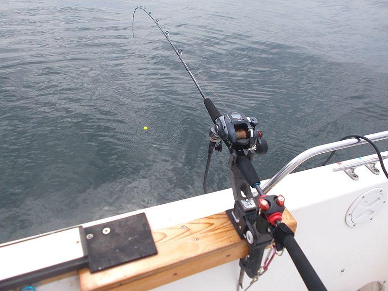 ここのところなんでもこれで釣っているフルソリッドロッド、便利で安心